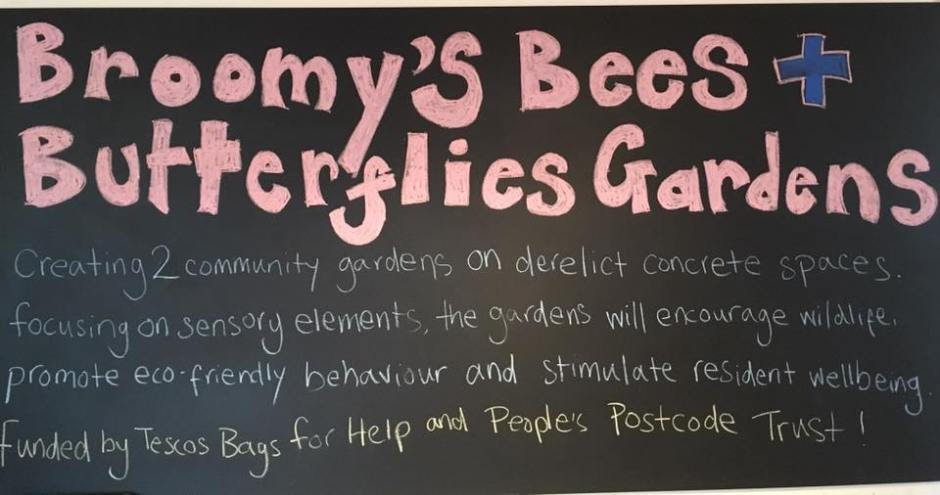 broomys-board